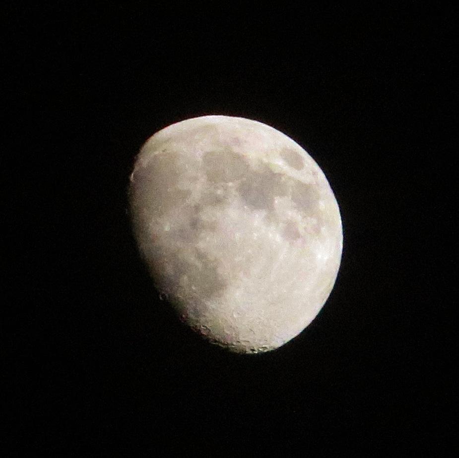 #photography #photoshoot #sky #night #clearsky #itsafullmoontonight #moonphotography #nightphotography #toronto #cityoftoronto #torontonightlife #torontoskyline #skyphoto #photosky #canoncamera #canonrebel #canonrebelt6i #canoncamerashoot #canonphotography #camerashootingpic.twitter.com/gzJ0Bw2rpY