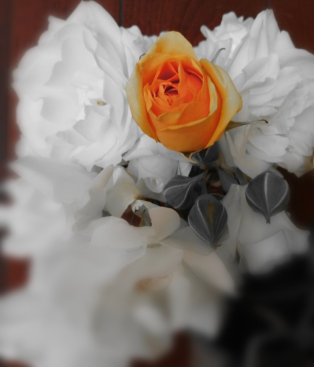 🌎 💙 💚 💛 🧡 ❤️  #LoveandLight #Changes the #World One #Heart At a Time 🌀💙🌀 #PeaceAndLove #Harmony #BeLove  #ShineyourLight #ShineOn #Awakening #ShinelikeDay🙏 #Newbeginnings #Joy #Happiness #Namaste🙏