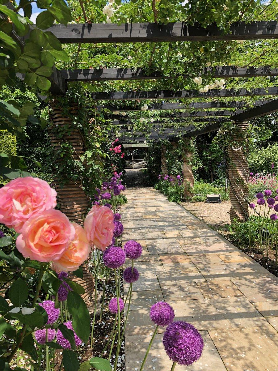 埼玉の案内 パート2  イングリッシュガーデンを散歩。イギリスから来たガーデンデザイナー達が3年も掛けて作った庭。私も新しい家で巨大化する薔薇を育てる事にした。帰りにジャパンケーキ賞で何度も受賞している『ル コントブルゥ 』に寄ってお祝い🎉 #モネの庭 #デビッドオースチン #暑いぞ熊谷 https://t.co/lUbUR4Xmit