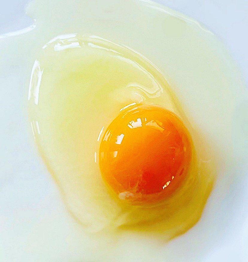 描いた生卵と撮った生卵