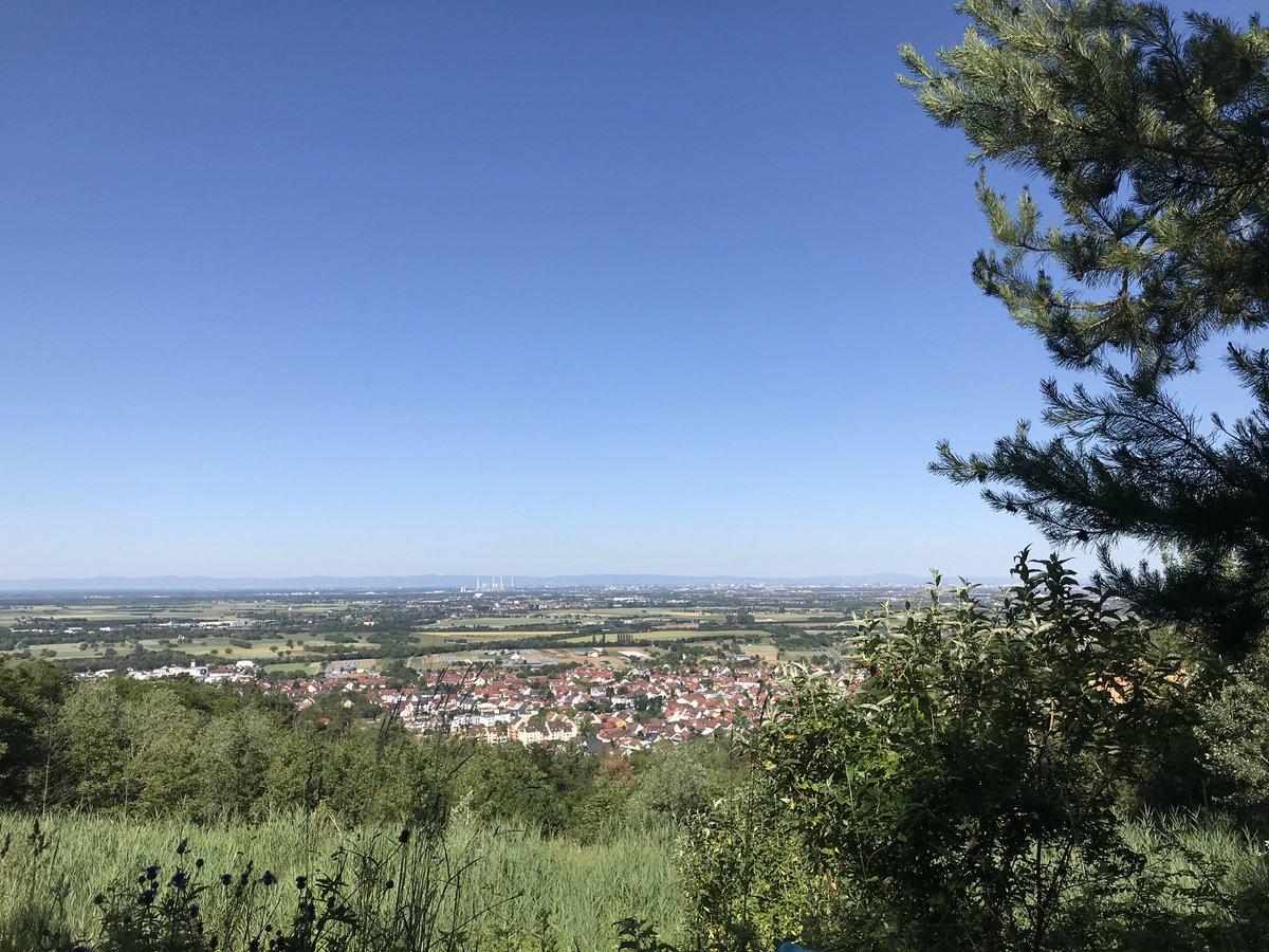 Have a great day! Take care and stay healthy  #Heidelberg #StayHealthyEveryone  #StaySafeStayHome  #XundBleim #HomeOffice  #TuesdayMotivation  #ThePhotoHour  #PhotographyWxpic.twitter.com/iVxGUgKSem