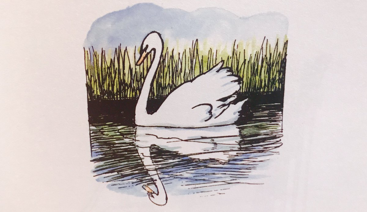The sun looks down from quiet skies  To where a quiet water lies, And there I saw a white swan make Another white swan in the lake; And breast to breast, both motionless, They waited for the wind's caress...  ~A.A.Milne #TuesdayThoughts #reflectionpic.twitter.com/k7J80TrW4q