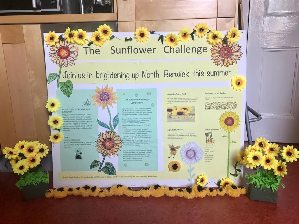 test Twitter Media - NBIB us promoting the @RHS sunflower challenge this summer. This is one of our posters in the window of Sweet News which gives all the details. Sunflower seedlings still available! #KSBScotland #northberwick #sunflowers https://t.co/khEaVhpWuR