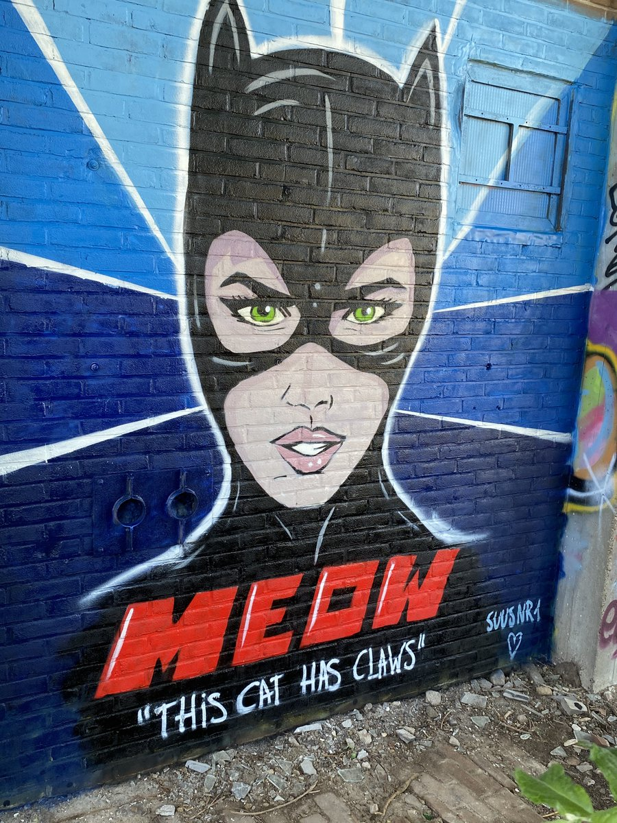 This Cat Has Claws #suusnr1 #streetart #ndsm #urbanart #graffiti #amsterdam #catwoman https://t.co/0JEx1aHhBc