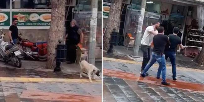 Köpeği fırça sapıyla dövdü, tepki gösteren kasabın üzerine bıçakla yürüdü: Manisa'nın Alaşehir ilçesinde, mobilya mağazası işleten Hüseyin A. (41), sokak köpeğine önce ayakkabısını fırlattı ardından da fırça sapıyla dövdü.… http://dlvr.it/RXpxt9 #Türkçe #SonDakika #Gündempic.twitter.com/QWRy28KU9d
