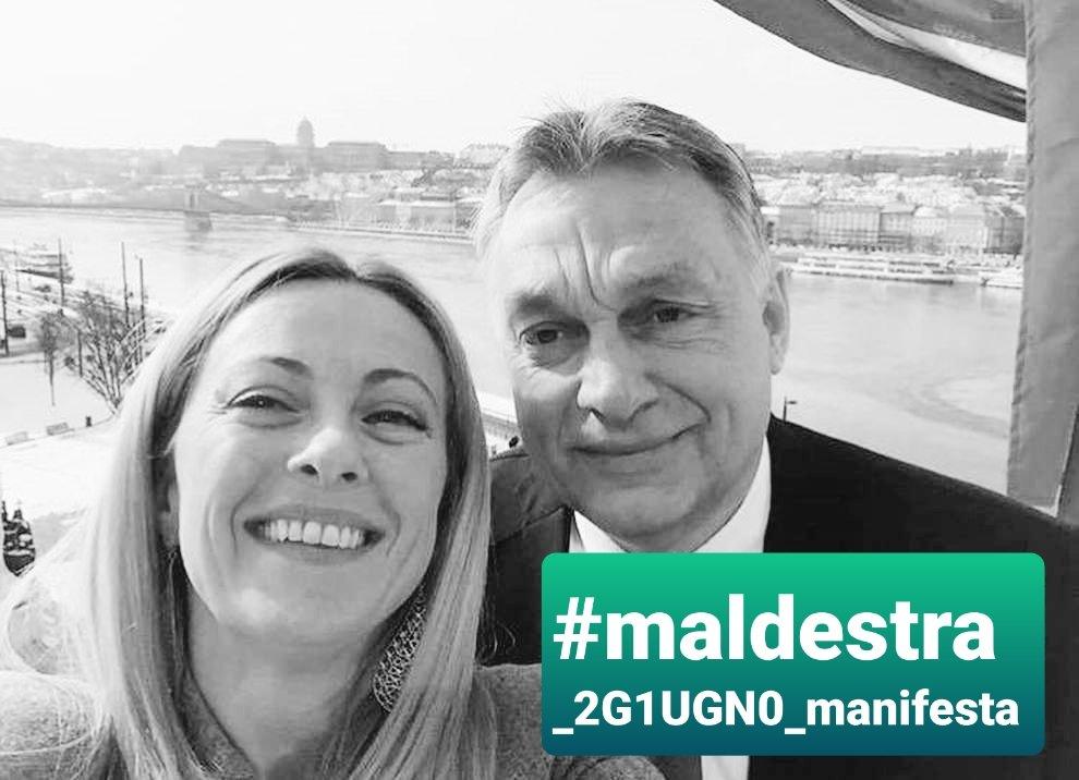 #maldestra_2G1UGN0_manifesta