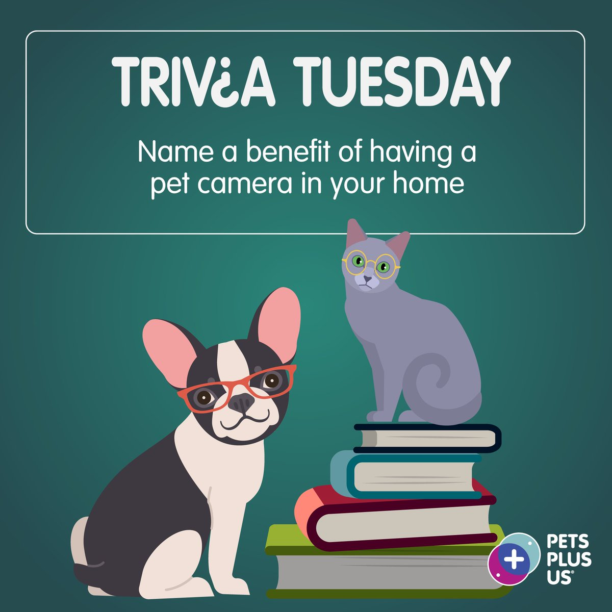 #Win a $25 PetSmart GC! Answer the question & RT to enter our #TriviaTuesday Giveaway. Open to CND residents only. Contest ends at 11:59PM EST. Note, this contest is in no way sponsored, endorsed or administered by, or associated with, Facebook, Instagram and/or Twitter. https://t.co/Vb0qCD8NFY