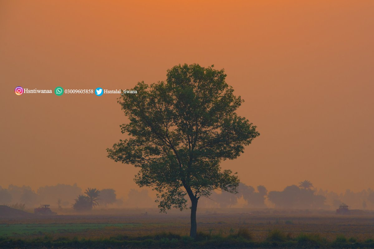 I'm #traveling hundreds of #kilometres across  #Pakistan and spending sleepless nights just to show you the #beauty of our #country  Help my cause by RTs, and by following me  PRINTS AVAILABLE  #tuesdayvibes #TuesdayThoughts #NaturePhotography #travel #Photography #PhotoOfTheDaypic.twitter.com/NEgN4BGGFL