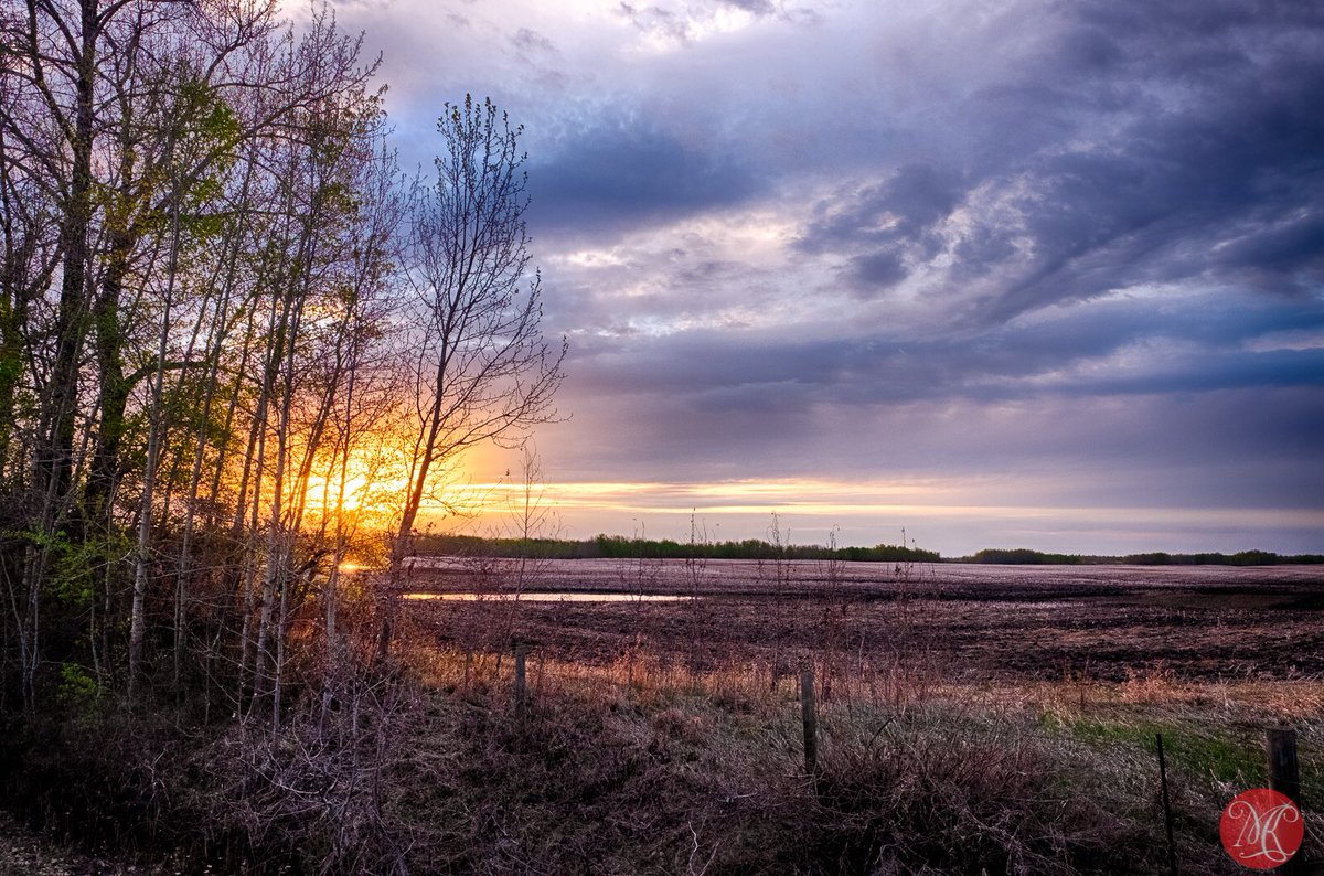 Early spring on the prairies.. can we escape the reality?! #yeg #alberta #landscapephotography #sunset #prairies #explore #nature #natureshots #EarthEscope #exploring #neverstopexploring #outdoors #outdoorslife #naturephotography #quest #discovery #discovering #lifeofadvernturepic.twitter.com/88C5STAC9M  by miksmedia