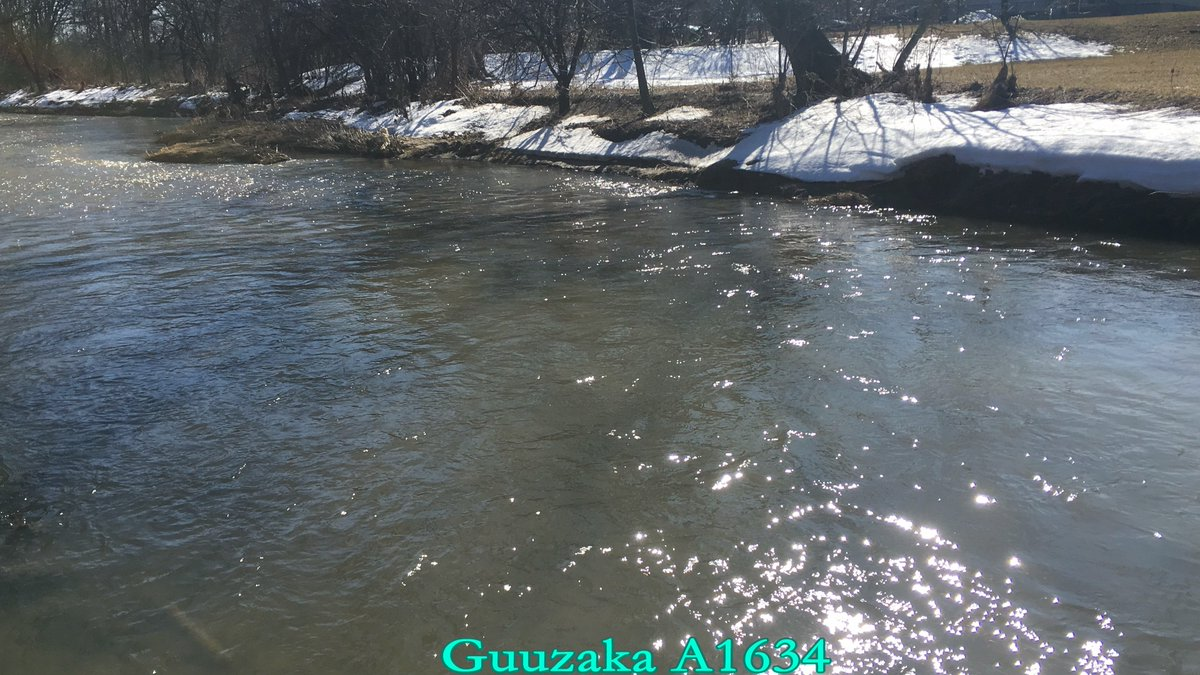 iPhone 6s Plus 4k Otter Creek March2020   #4K #UltraHighDefinition #UHD #Outdoors #Water #OtterCreek #Creek #Sunshine #SunGlitter #Canada #Ontario #Whitby #TownOfWhitby #Durham #DurhamRegion #RegionalMuncipalityOfDurham #March #March2020 #ShotOniPhone6sPlus