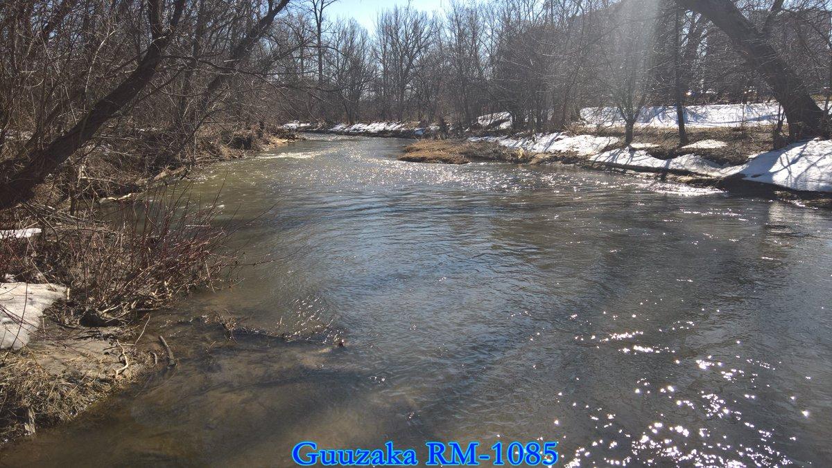 Microsoft Lumia 950 XL 4k Otter Creek March 2020 (SCV)    #4K #UltraHighDefinition #UHD #Outdoors #Water #OtterCreek #Creek #Sunshine #SunGlitter #Canada #Ontario #Whitby #TownOfWhitby #Durham #DurhamRegion #RegionalMuncipalityOfDurham #March #March2020