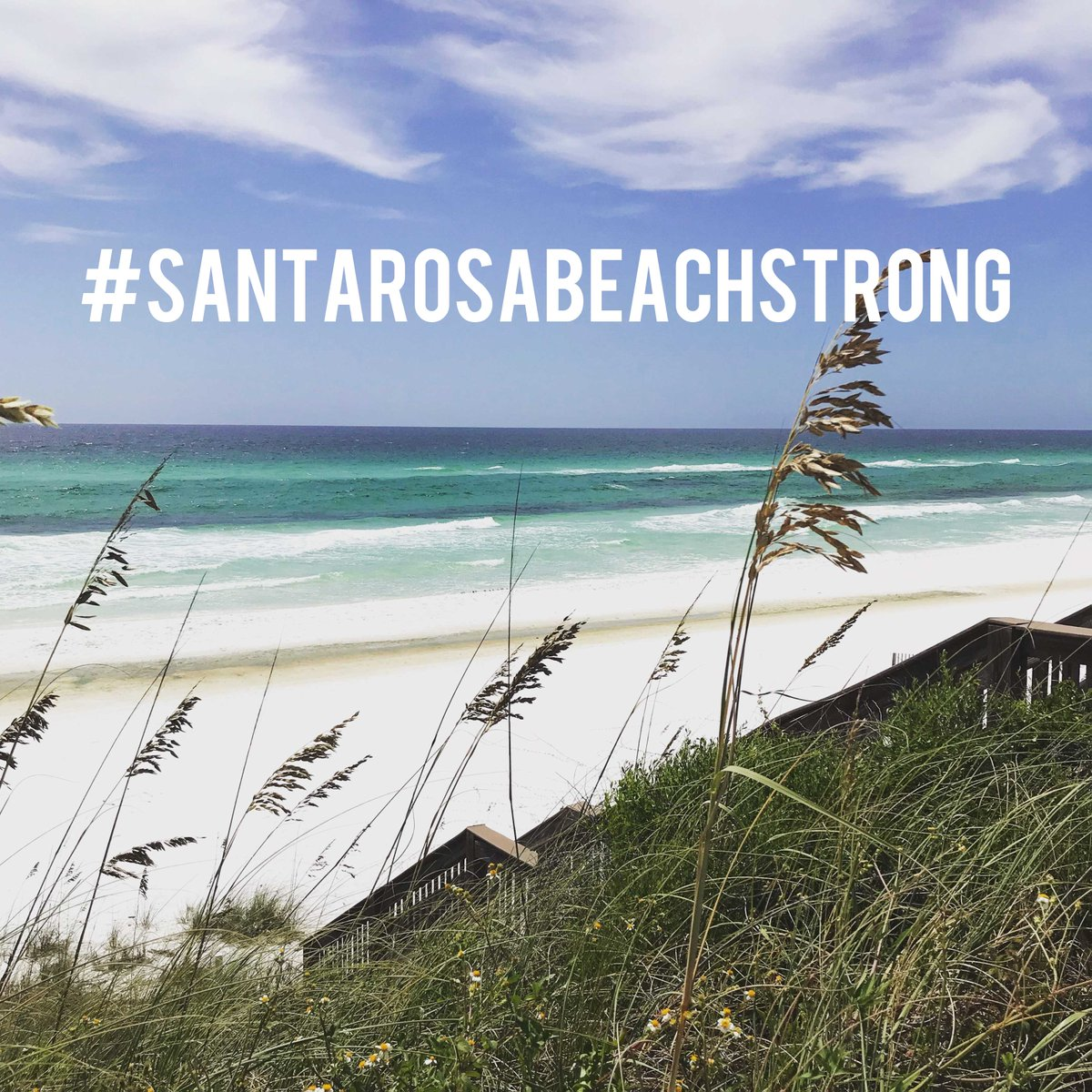 Thank you to our incredible members for raising over $21,000 to directly support the members and staff who lost their homes in the recent fire  . . . . #santarosabeachstrong #clublife #santarosaclubpic.twitter.com/uomf3qnAHP