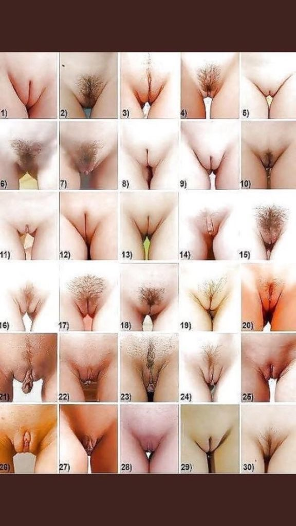 Different Types Of Pussy