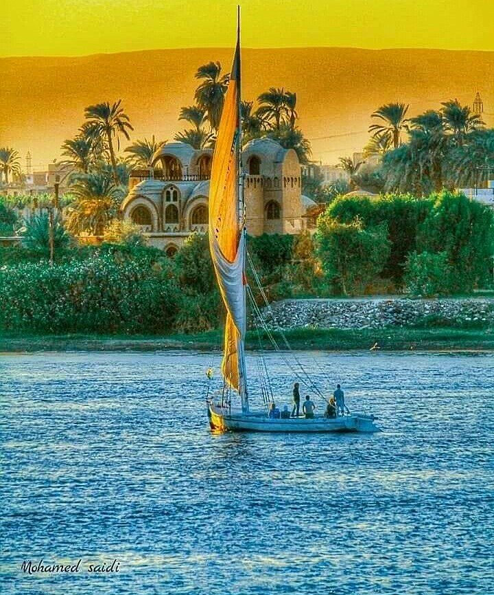 ,,   Beautiful memories are like old friends.  They may not always be on your mind but they are forever in your heart..                       ~ Susan Gale  #GoodEvening #Aswan #Egypt pic.twitter.com/tpbum7aMHx