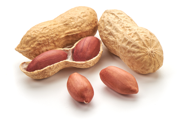 Peanuts. Yummy or evil?