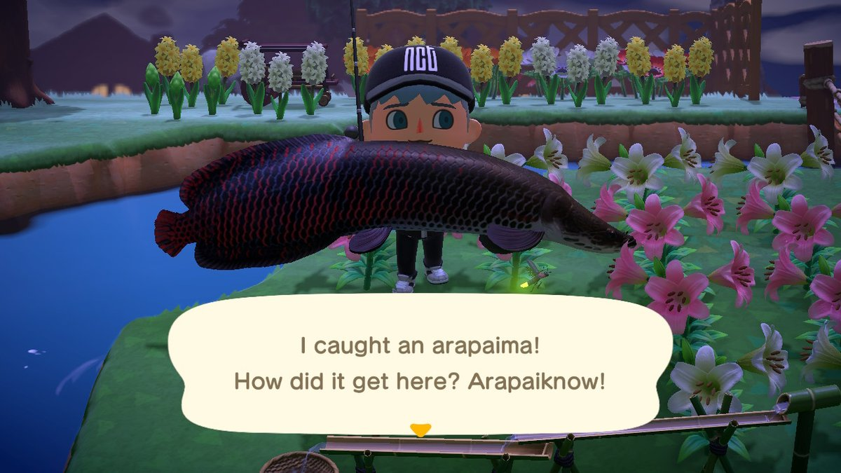 Oml I'm so proud. I feel accomplished #AnimalCrossing #ACNH #NintendoSwitchpic.twitter.com/R4vS6hDkbG