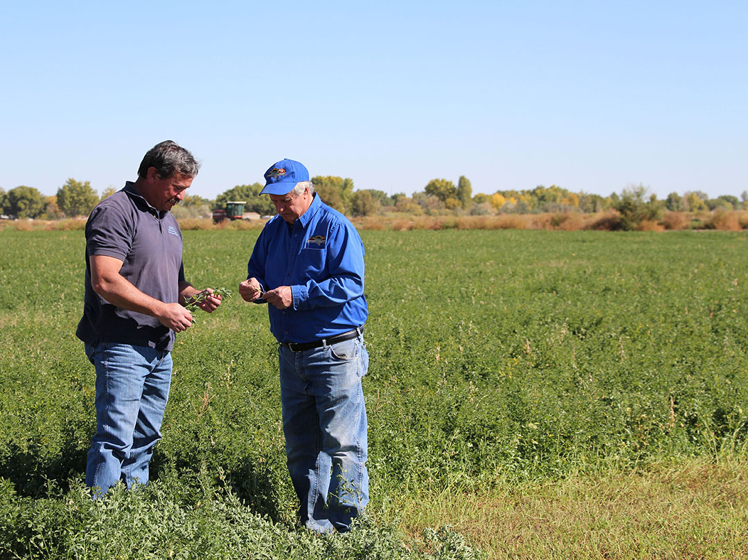 Come work with us! JOB OPEN in our Ely or Las Vegas office: Civil/Agricultural Engineer. Apply by June 11  @USAJOBS: https://t.co/mvsky9d2Tq #conservationagriculture #Nevada #conservation https://t.co/RujAJtChx7