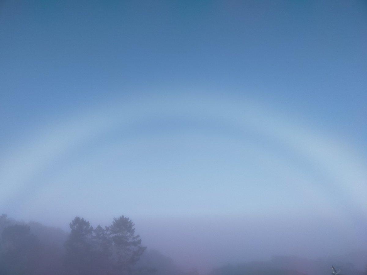 Fog bow #Auckland