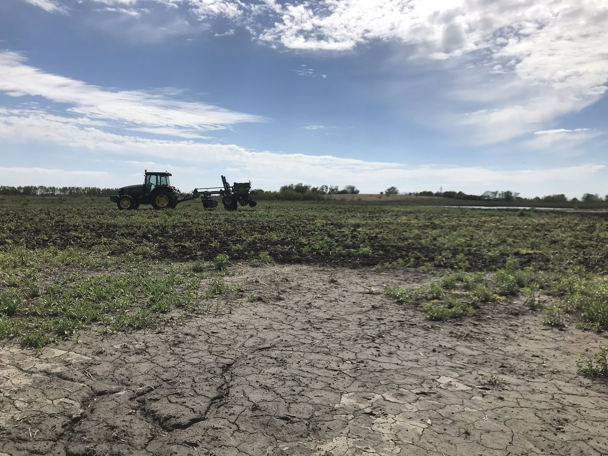 Feels good to be back putting some habitat into the ground. 78 acre #CREP wetland restoration and 33 acre CRP upland site. Can't wait for the results! #pheasantsforever #ducksunlimited #waterquality #soilhealth #conservation https://t.co/5FIFKMqiIC