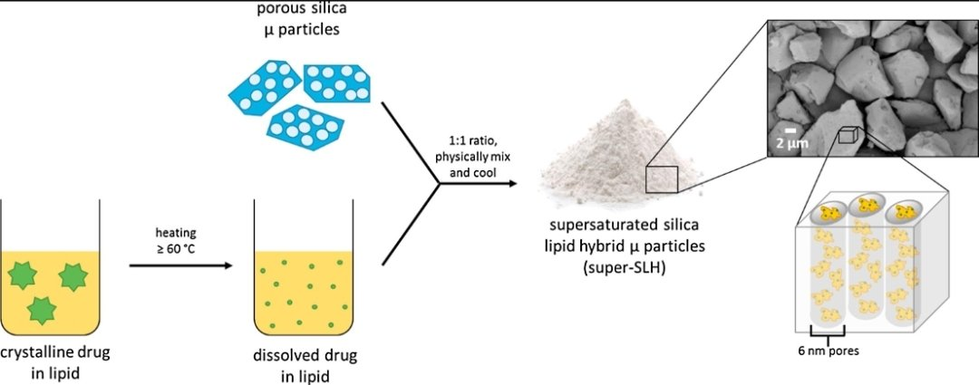 My first #PhD paper with @LabPrestidge! I developed oral  supersaturated silica-lipid hybrid #formulations. #Silica stabilised the supersaturated #drug in lipid to inhibit some recrystallisation, achieve high drug loads and enhance #dissolution in #vitro.  https://t.co/6lf59oJKhD https://t.co/REVABIsnZF