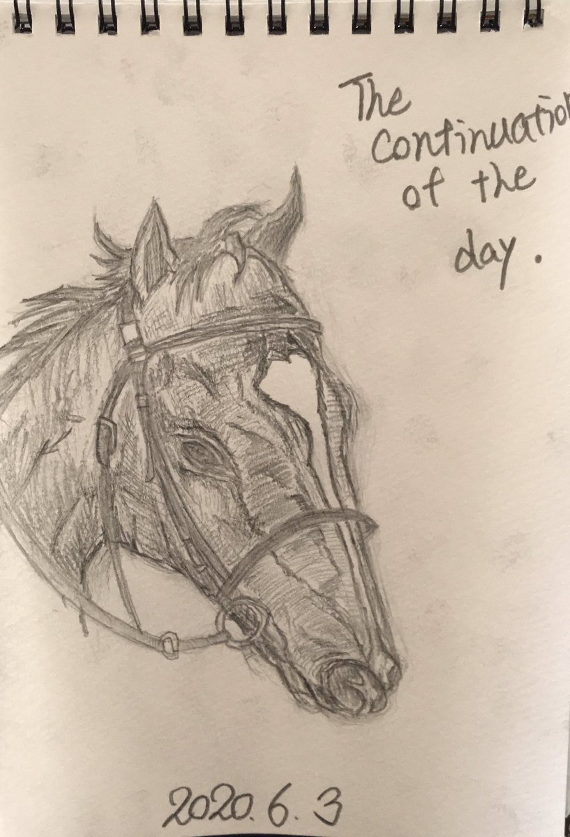 『The continuation of that day-あの日の続き-』 #馬 #horse #競馬 #horseracing  #イラスト #illustration #鉛筆画 #pencildrawing #pencilsketch #鉛筆 http://instagram.com/p/CA9c1q6F_PG/ …pic.twitter.com/PX6tCUpKsu