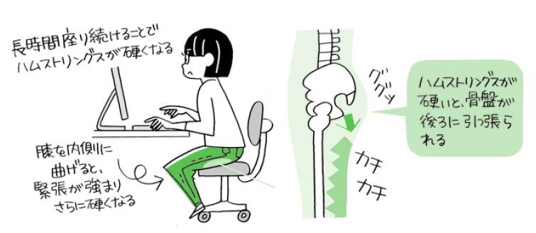 座っているとき、画像のように膝を内側に曲げていませんか。これ、絶対にやめましょう。ハムストリングス(もも裏の筋肉)が硬くなり、骨盤を後ろに引っ張るようになります。すると骨格がゆがみ、猫背や巻き肩になり、首・肩・腰に負担がかかります。「何もしなくても」疲れてしまうんです。