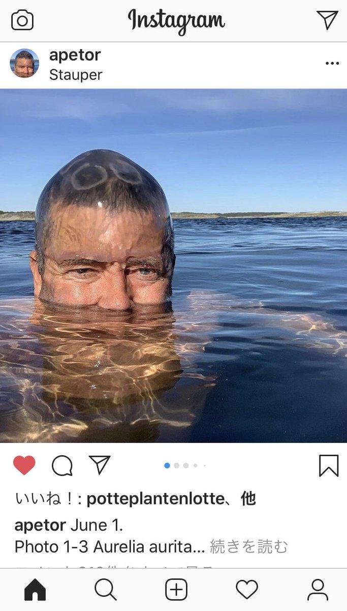 俺の大好きなノルウェーの狂人、寒中水泳してクラゲ頭に被ってた。