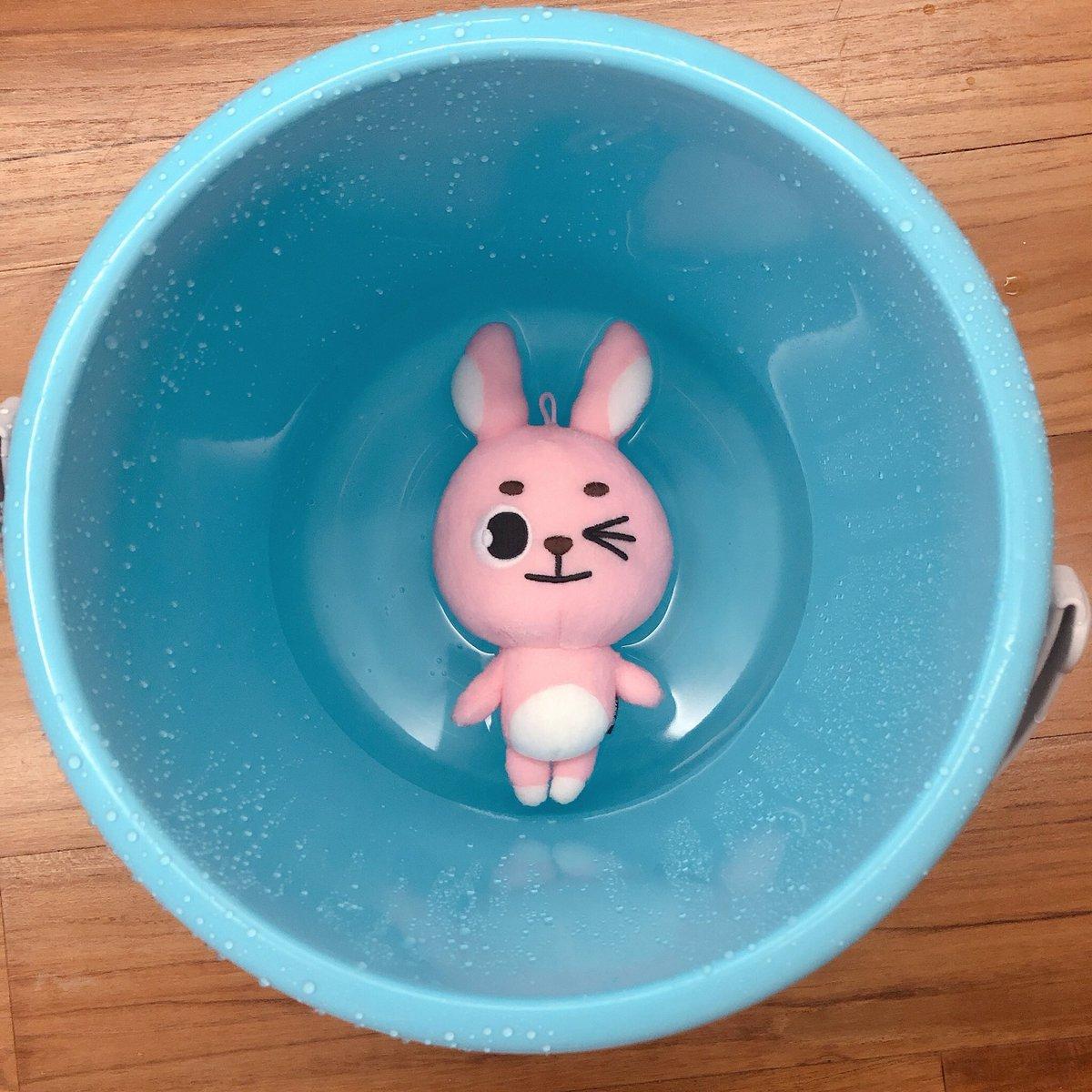 It's bath day<br>http://pic.twitter.com/A1B5wN3UDm