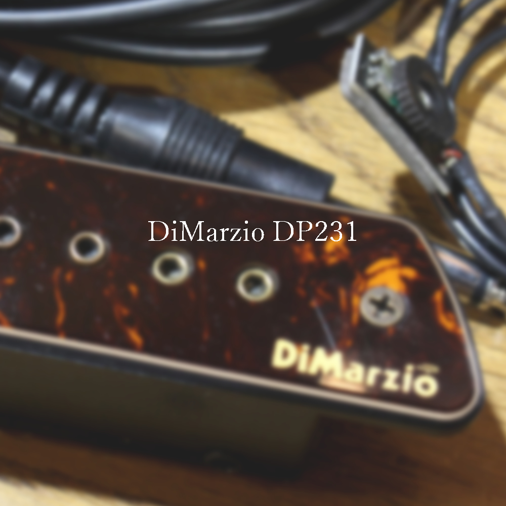 DiMarzio DP231 https://woodvillage78.net/products/detail/2276…  #dimazio #dimaziopickups #acousticguitar #星野楽器 #shadow #woodvillagepic.twitter.com/VqCTwihfsT