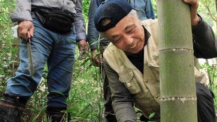 タンタンの竹運んで20年 別れ惜しむパンダの里  #タンタン #淡河町