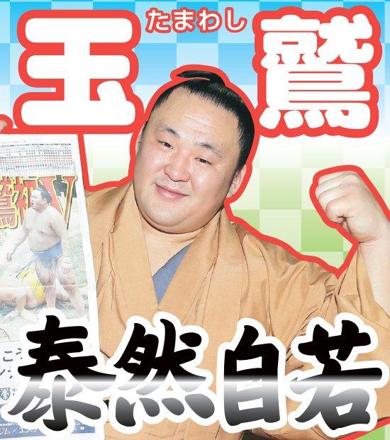 第9回大相撲総選挙、投票受け付け中です。あと3日くらい。