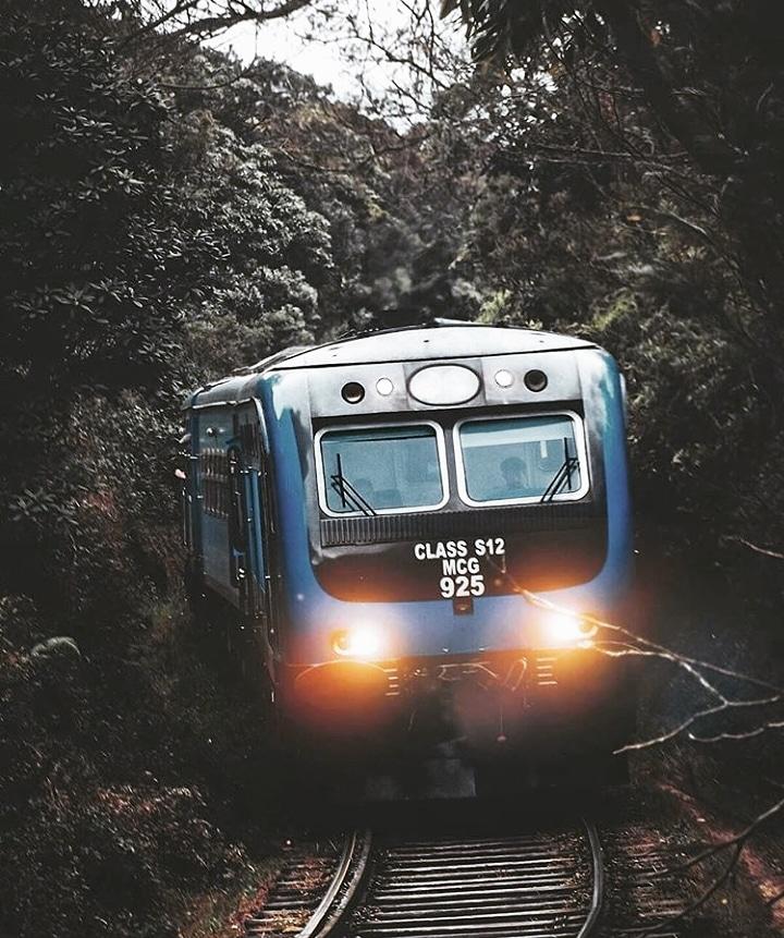 Blue Train Travel    On The Way To Ella  Follow Us: @LkTravelogue IG/FB/Twitter  Photo Credits: @shutterpilgrim (IG Acc)  #travel #travel_vlog #travelogue #srilanka#girlswhotravel #explore #style #travelingram #travelingram #ceylon #traintravels #photographypic.twitter.com/oo8SldOvq5