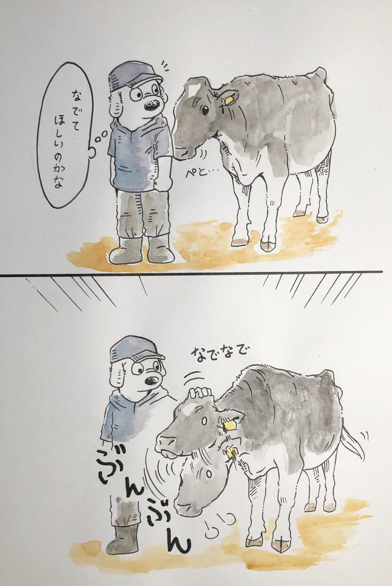 『嫌がっているわけでは無さそうだけど、ジッとしていられない牛🐮』