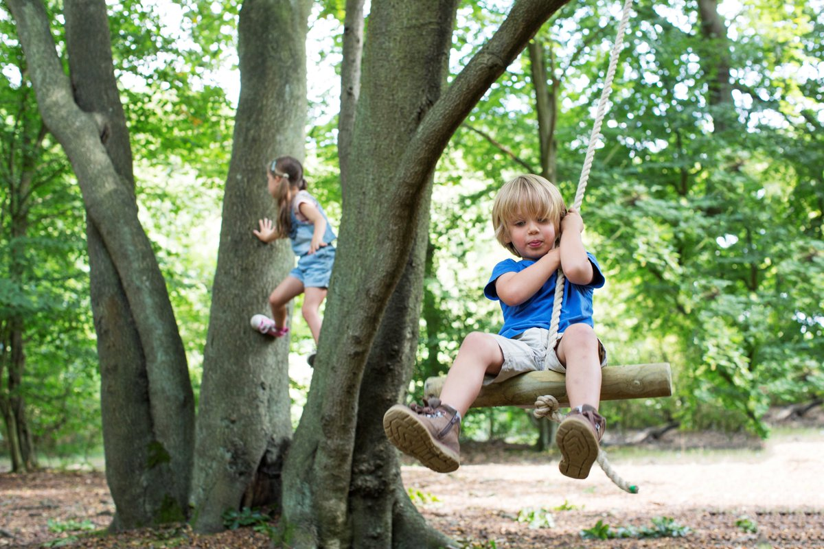 Why not make a gift donation for fathers day to https://t.co/F8z4lEHatF which help look after Edinburgh's trees. @Edinburgh_CC