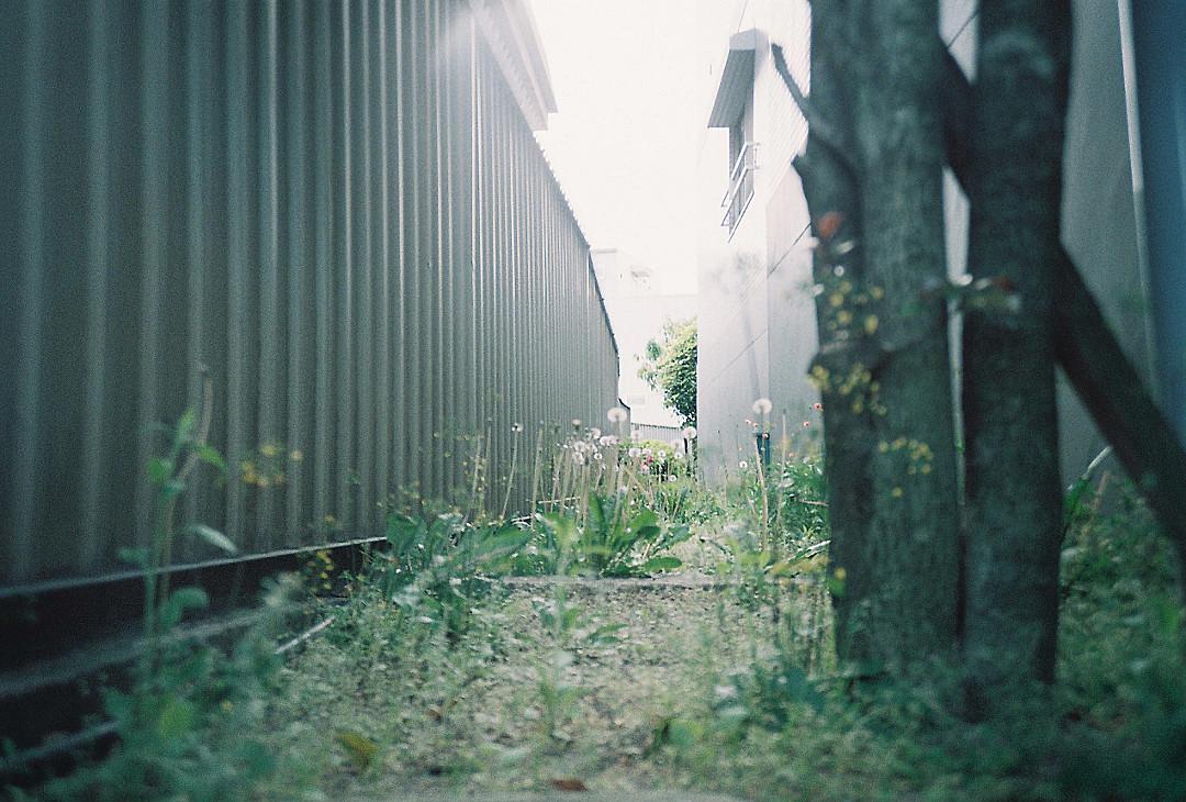 街の隙間  LOMO LC-A+ Minitar-1 f2.8 32mm Fujifilm C200  #file #filmcamera #filmphoto #filmphotography #filmisnotdead  #写真好きな人と繋がりたいpic.twitter.com/w6ks1dZOsS  by acky アキ