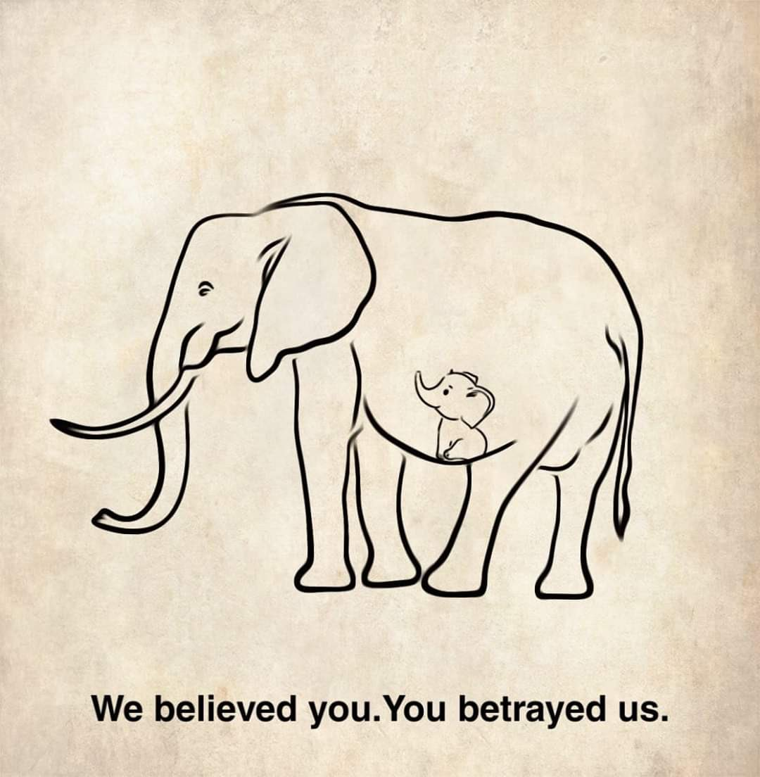 What happened to humanity #Elephant