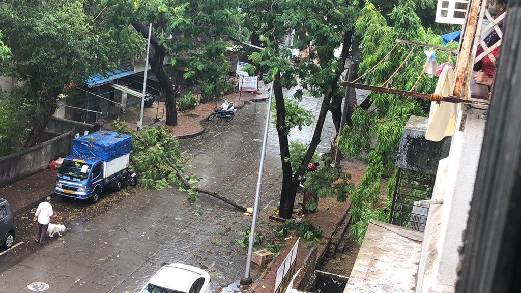 @mybmcWardT @mybmc @MumbaiPolice there is a tree fallen at Tambe Nagar Mulund West, please check it as soon as possible as the roads has been blocked. Thank You! pic.twitter.com/KRJk5vNcX3