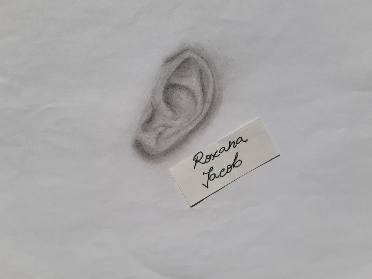 ✏👂🏼 • • • #drawing #pencildrawing #passion #draw #paper #art #2k19 #blackandwhite #ear #study #eardrawing #real #realdrawing #romania https://t.co/ABUyiwyFt8