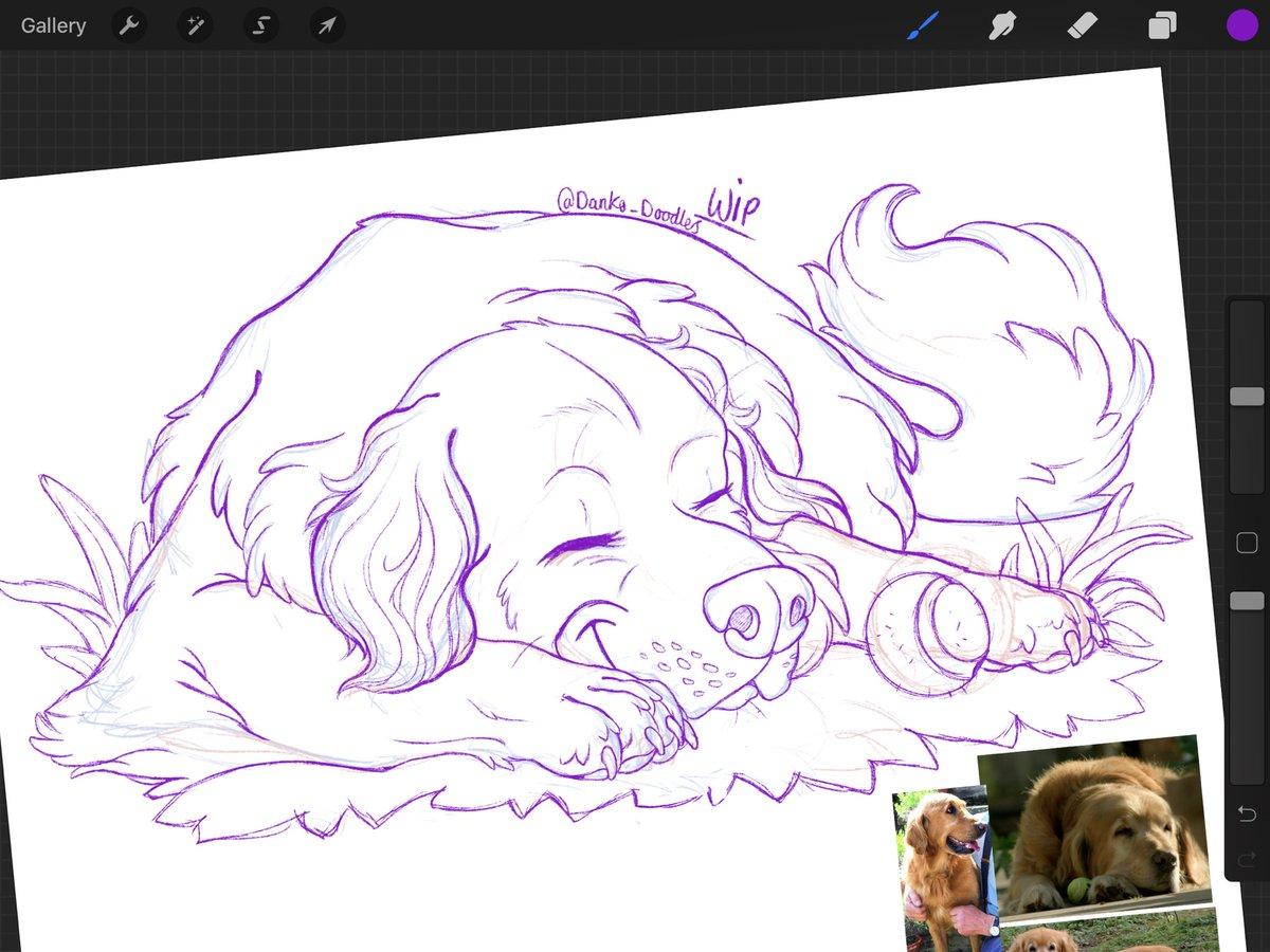 Working on a little tribute for a special dog from #gardenersworld . . . #montydon #nigel #doglovers #wipwednesday #sketch #rough #workingonlineart #digital #art #artistsoninstagram #goldenretrieverpic.twitter.com/XetqE2uOHc