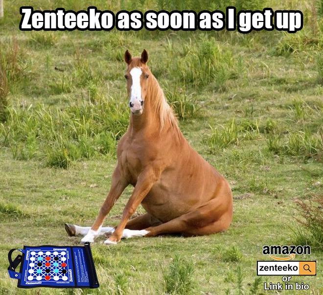 #horsesitting #horsetraining #horses #caballos #sitting #tricktraining #equinephotography #equine #boardgamegeek #boardgaming #boardgame #abstractstrategy #tabletopgaming #familygamenight #familygames #strategygame #travel #travelgame #zenteekopic.twitter.com/5iK4ONmyhp