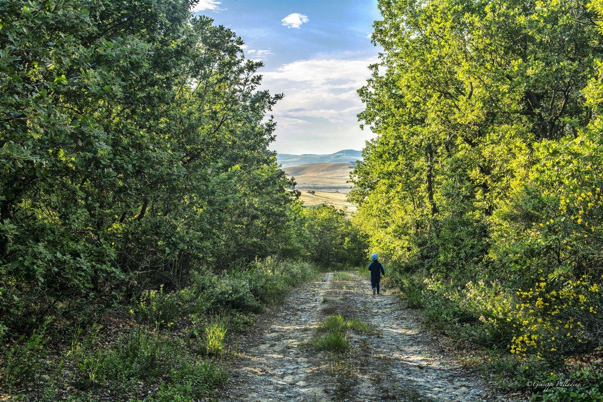 Il gioco di un bambino, una delle massime espressioni di libertà.  #rocchettasantantonio #weareinpuglia #giuseppepalladino #gius01pal #regionepuglia #southitaly #natura #nature #naturephotography #paesaggio #turismorurale #3giugno https://t.co/uRylTXKkCB
