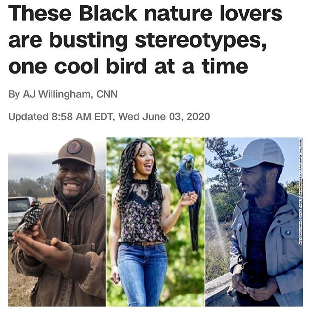 Wow Thank AJ and CNN for giving us the platform to share our story and let everyone know  Black people also find joy in nature and Nature is for everyone and should be used by everyone #blackinnature #blackbirdersweek…  📸 https://t.co/naoVgj9EYQ via https://t.co/igRKH8jeXT https://t.co/tw9cSKkf6r
