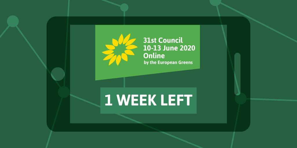 At our first online Council the Green family will meet to: 🌻 Outline our position on the #COVID19 recovery and the protection of gig-workers 🌻 Debate several issues, from gender to democracy and food sovereignty 🌻 Elect a new member party #EGP31 europeangreens.eu/onlinespring20…