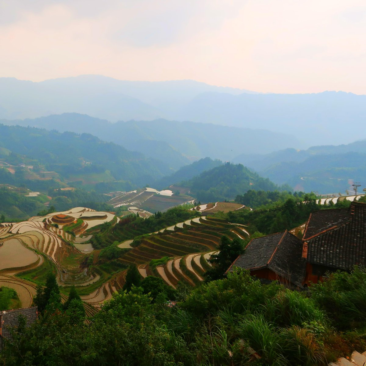 /u/_billmanning: Took this photo at the Longji Rice Terraces in China a few years ago - never had a more rewarding view at the end of a climb #travel #traveling #travelphotography #travelphoto #photo #exploring #ilovetravel #ilovetotravel #travelbucketlist #travelblogpic.twitter.com/a5OP8Vlgww