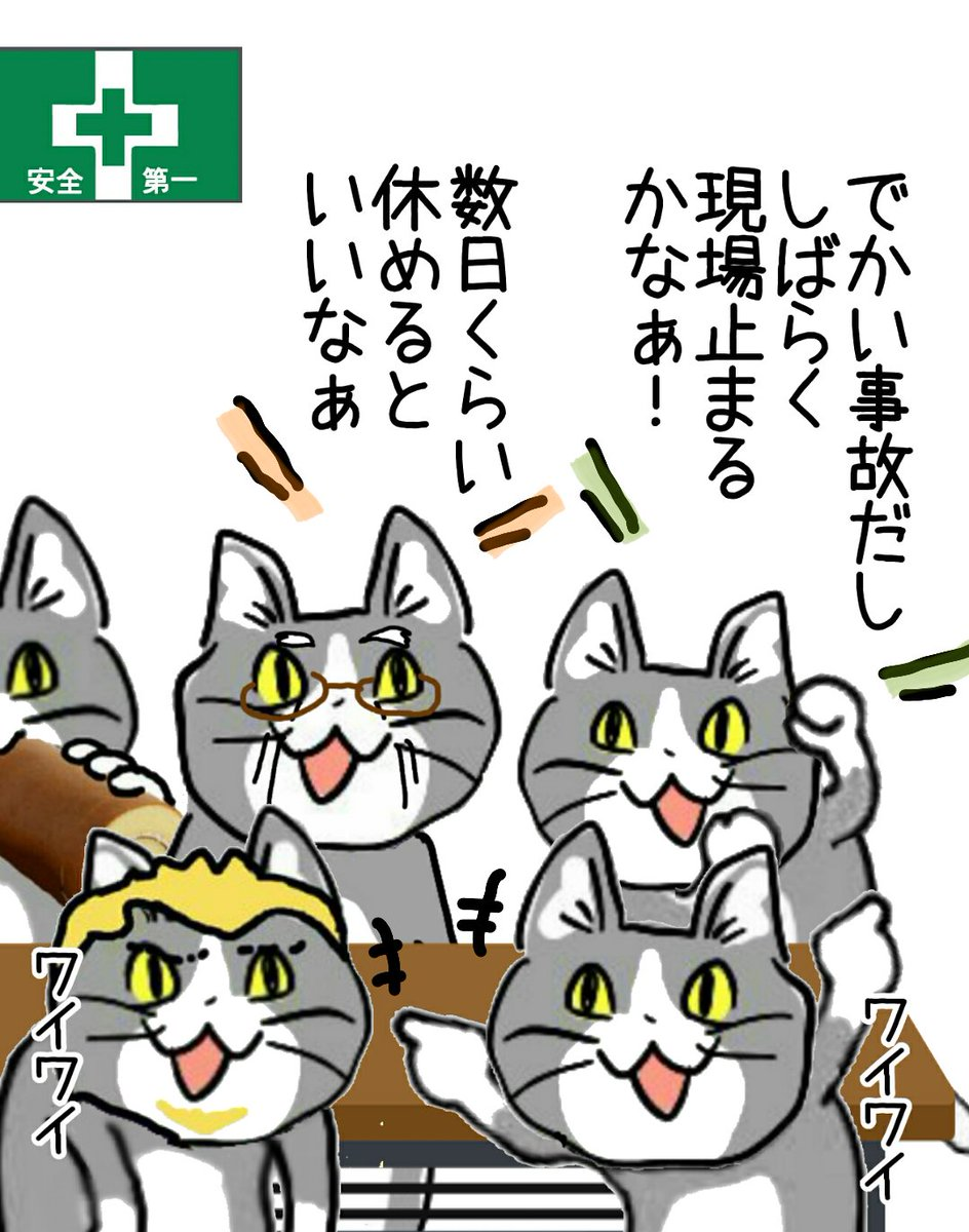 猫 素材 現場