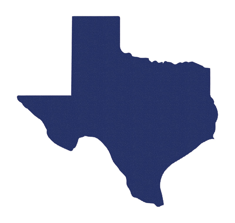 Win Texas. Lose Trump. 38 electoral votes. $38. Match me here: txdem.co/donate-now If we turn Texas blue, we beat you-know-who! twitter.com/georgetakei/st…