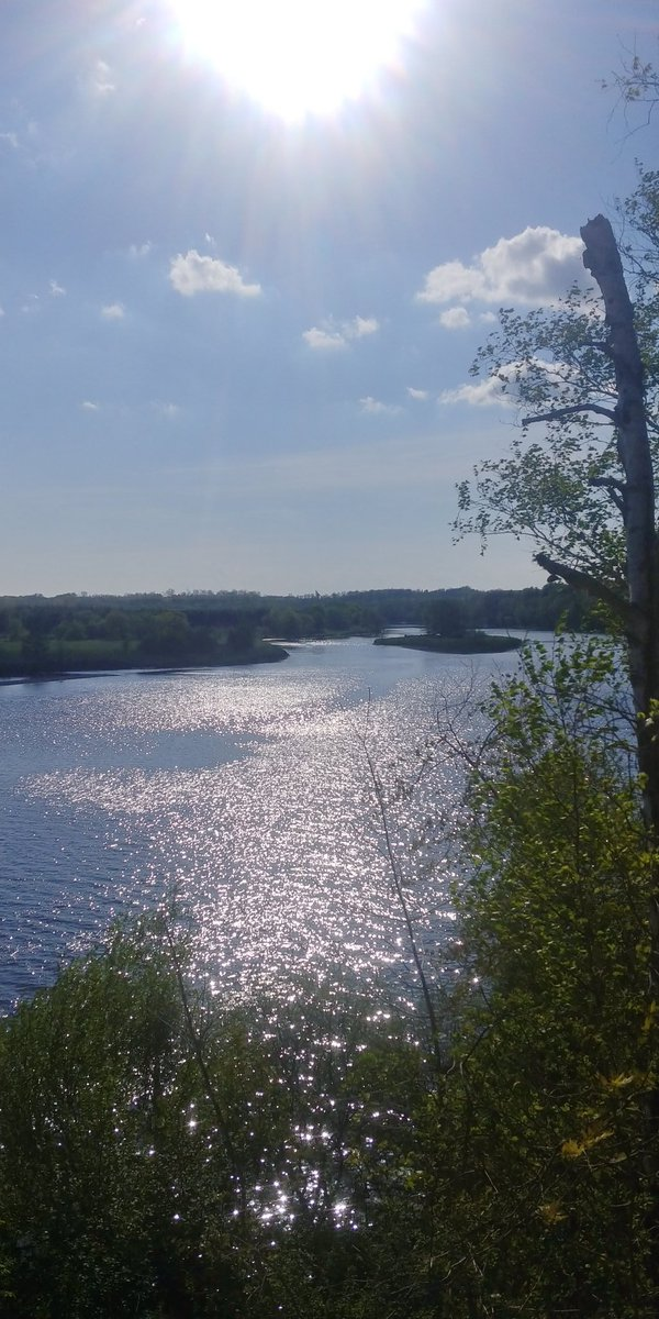 Beautiful day at the Grand River #Covid_19  #walk #beautifulworld #naturetherapy #River #photography #photo #lovenature https://t.co/CzINnMc1co
