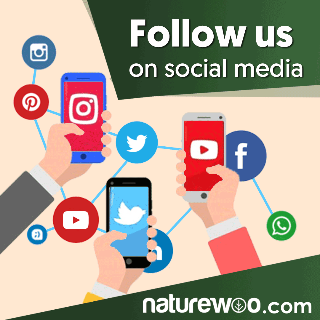 Need Organic, healthy and natural products at the lowest prices? Visit our site:  #Naturewoo #medicalsupplies #medlife #organicshop #organiclife #organicfood #glutenfree #veganfood #healthyeating #healthyhabits #Miami #LA #Chicago #Boston #Tampa