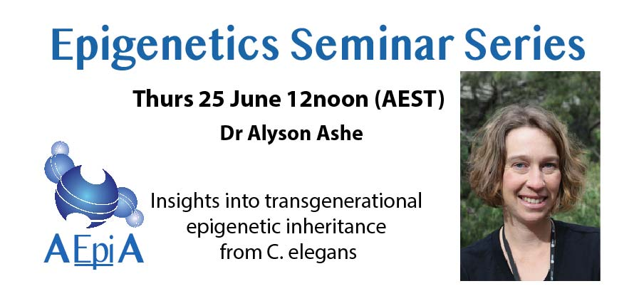 RT @AEpiA: Delighted to announce our first speaker for our new #Epigenetics Seminar Series.   Dr Alyson Ashe from @Sydney_Uni :Thurs 25 June 12pm (Sydney time). @Ashe_wormlab All AEpiA members welcome! https://t.co/D0dwhmIJyS https://t.co/pUIyHNGd9b