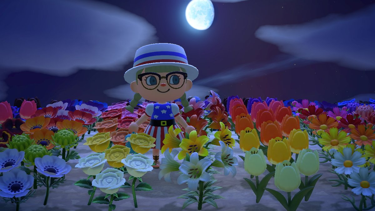 Favorite shot from tonight!!!! From flower field at @lucasxv23 island #AnimalCrossing #ACNH #NintendoSwitch